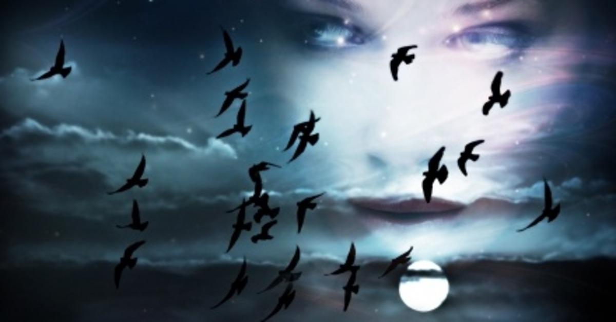 ¿Sueños a la carta? : Sueños lúcidos